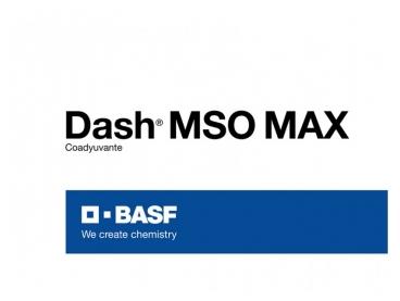 Coadyuvante Dash® MSO MAX