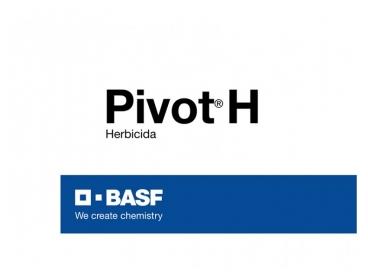 Herbicida Pivot® H