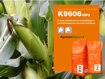 Maíz KWS K9606 VIP3