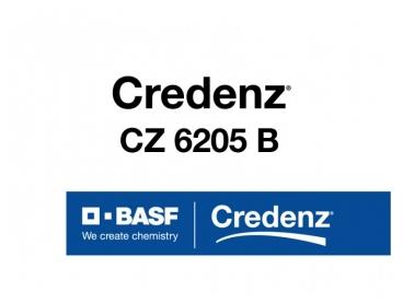 Soja Credenz CZ 6205 B