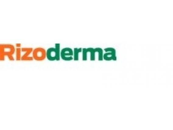 Curasemilla Rizoderma