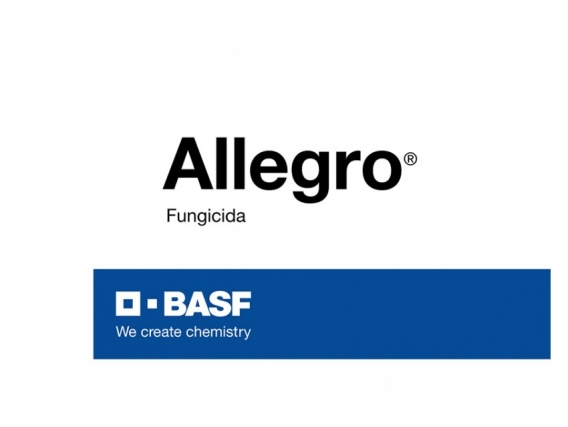 Fungicida Allegro®